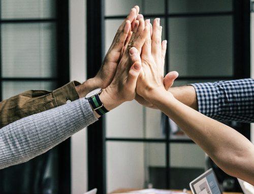 Finden und Halten – wichtige Mitarbeiterstrategien im Bereich der High Potentials